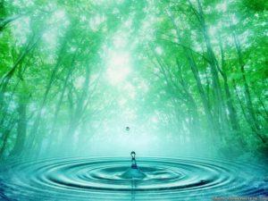 Способность воды сохранять информацию