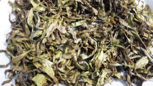 Листья после ферментации